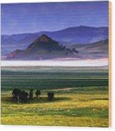 Flat Lands Of Kunming Wood Print