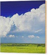 Flat Open Grassland And Sky Wood Print