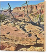 Flat Rock Along Scenic Drive Wood Print
