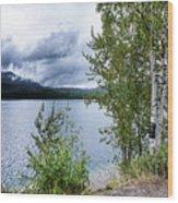 Flathead Lake 5 Wood Print