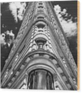 Flatiron Building  Nyc Wood Print
