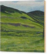 Flattops Wilderness Wood Print