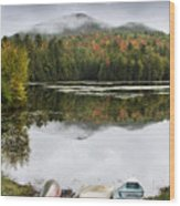 Flavor Of The Adirondacks Wood Print by Brendan Reals