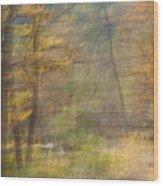 Fleeting Autumn Wood Print