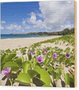 Fleming Beach Wood Print