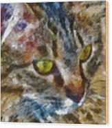 Fletcher Kitty Wood Print by Marilyn Sholin