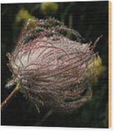Fleur Coeur Wood Print