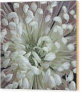 Fleur De Feu 3 Wood Print