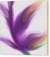 Fleur De Lumiere 02 Wood Print