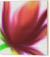 Fleur De Lumiere 04 Wood Print