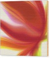 Fleur De Lumiere 05 Wood Print