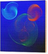 Fleuron Composition No.112 Wood Print