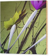 Fleurs 2 Wood Print