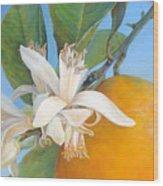 Fleurs d oranges Wood Print