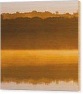Flight At Dawn Wood Print