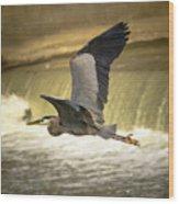 Flight Below The Falls Wood Print