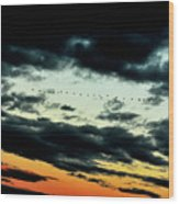 Flight Of The Geese Wood Print