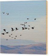 Flight Of The Waterfowl Wood Print
