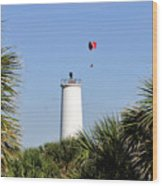 Flight Over Egmont Key Wood Print