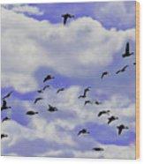Flight Over Lake Wood Print