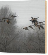 Flight To The Fields Wood Print