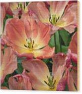 Flighty Tulips Wood Print