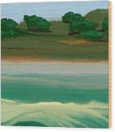 Flinders Island  Wood Print