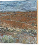 Flinders Ranges Wood Print