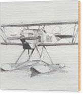 Float Plane Ib10 Wood Print
