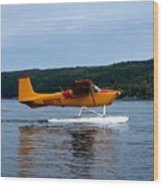 Float Plane Two Wood Print