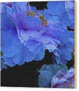 Floating Bouquet 10 Wood Print