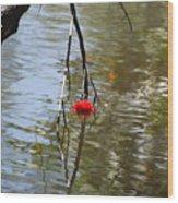 Floating Flower Wood Print