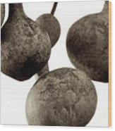 Floating Gourds Wood Print