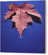 Floating Leaf 2 - Maple Wood Print