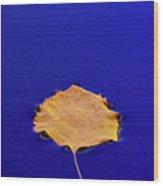 Floating Leaf 3 - Birch Wood Print