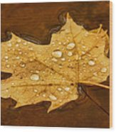 Floating Maple Leaf Txt Wood Print