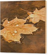 Floating Maple Leaves Pnt Wood Print