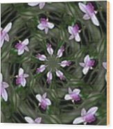Floating Orchids Wood Print