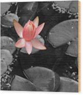 Floating Pink Wood Print