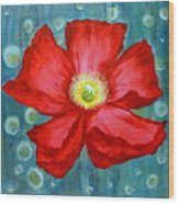 Floating Poppy Wood Print