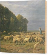 Flock Of Sheep In A Landscape Wood Print by Charles Emile Jacque