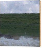 Flood Gates Open Wood Print