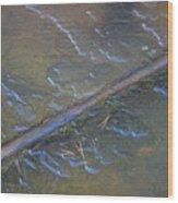 Flooded Rails Wood Print