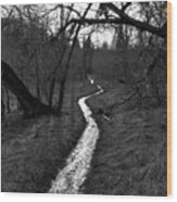 Flooded Trail Wood Print