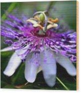 Flora Passiflora Wood Print