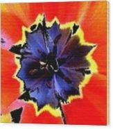 Floral 1229 Wood Print
