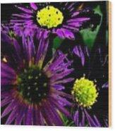 Floral 81 Wood Print