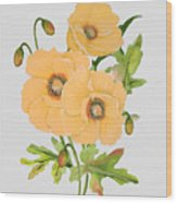 Floral Botanicals-jp3785 Wood Print