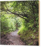 Floral Confetti On The Trail Wood Print