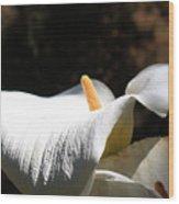 Floral Detail Wood Print